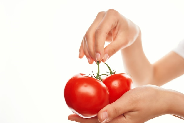 Tomatoes in hands for rare ingredients vitamins vegetables
