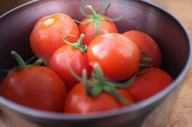 Tomatoes in metal bowl.