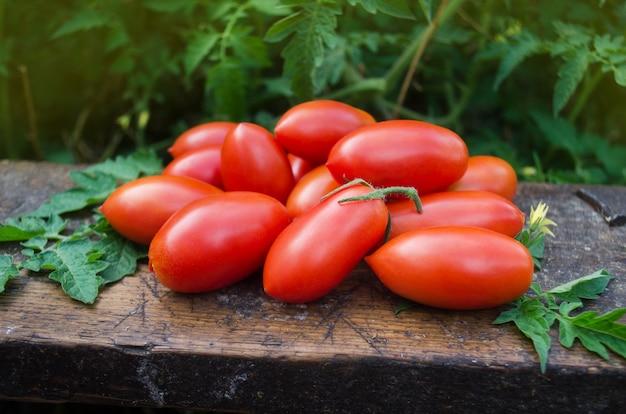 나무 테이블에 토마토