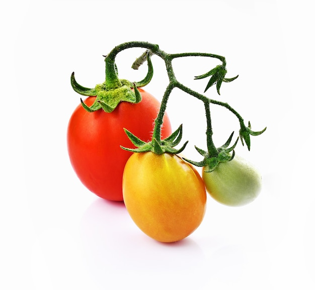白地に赤、緑、黄色のトマト