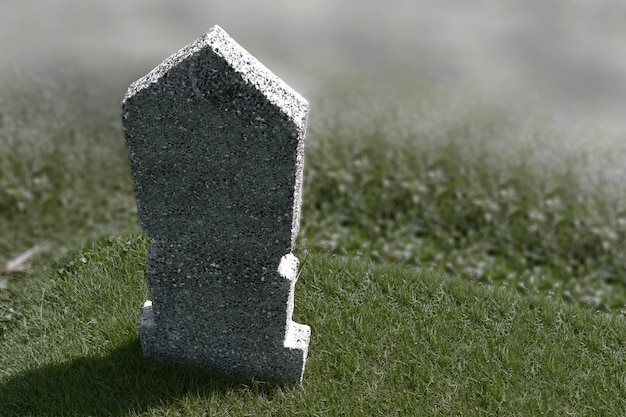 Tombstones on the graveyard on the meadow. halloween concept