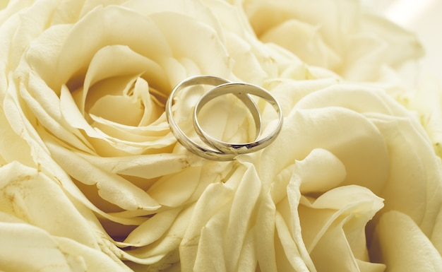 Toned background for wedding with rings lying on white roses