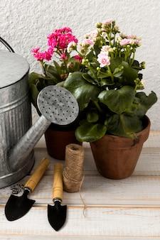Инструменты и цветочные горшки