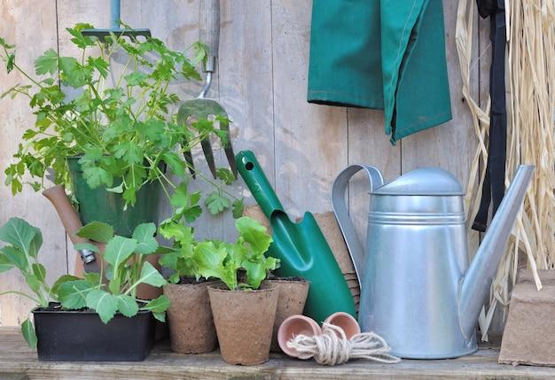 나무 배경에 모종 도구 및 원예 액세서리