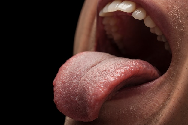 Tooth dentist people health food