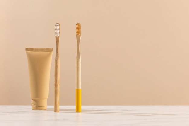 Spazzolini da denti e contenitore per crema
