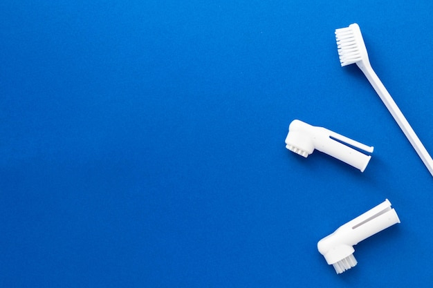 Зубные щетки для собак и кошек на синем