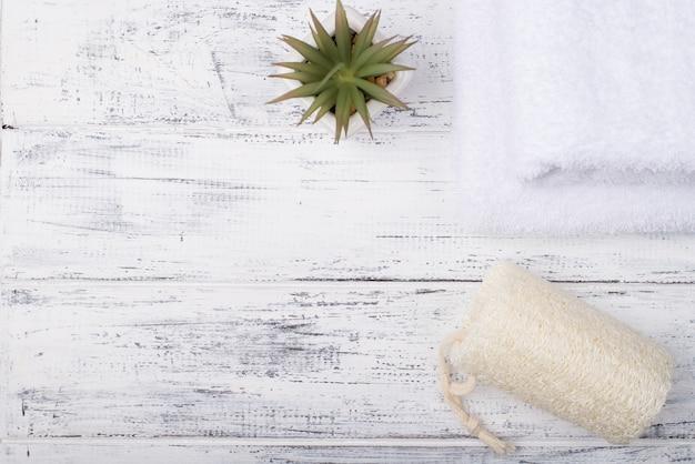 コピースペースと白い木製の背景に分離されたヘチマスポンジと多肉植物の俯瞰写真の上の上
