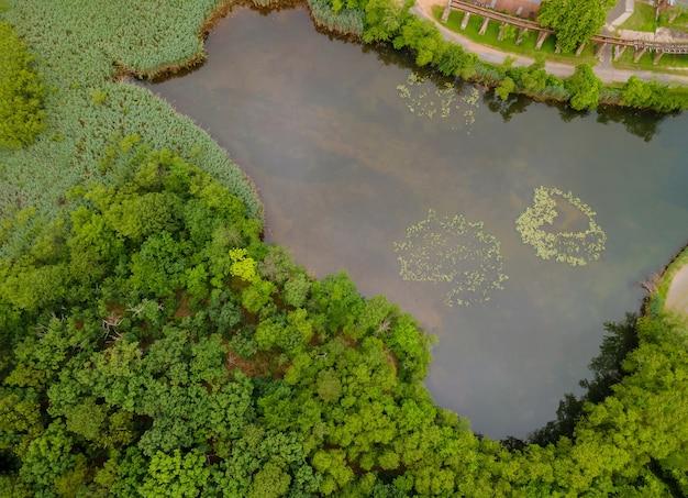 高さから秋の森の風景の中の美しい穏やかな湖のトップ空撮パノラマ