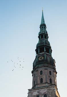 The top of a clocktower with green top and birds flying next it