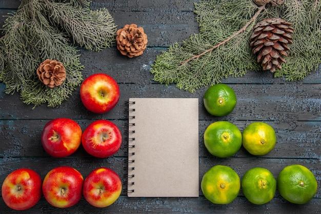 Vista ravvicinata dall'alto quaderno di mele lime sei mele giallo-rossicce quaderno bianco e sei lime su superficie grigia accanto ai rami e ai coni di abete rosso
