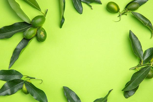 上のクローズアップビューは、緑のテーブルに柑橘系の果物の葉を残します