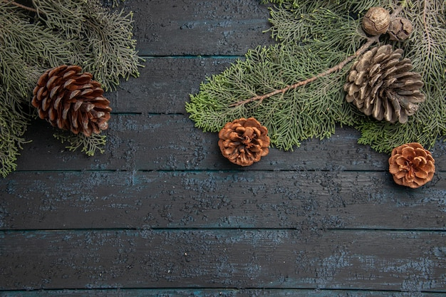 Top close view branches spruce branches with different cones on the grey table