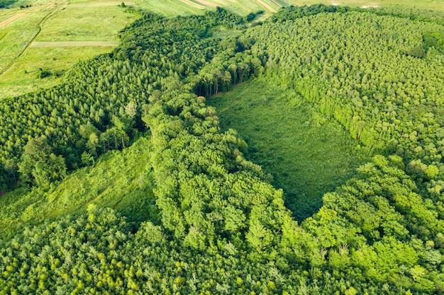 세계 삼림 벌채 산업의 결과로 나무가 줄어든 녹색 여름 숲의 공중보기. 세계 생태에 해로운 인간의 영향.