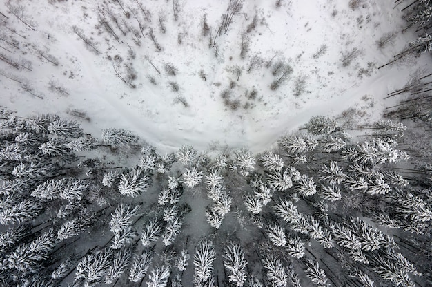 寒い静かな日に冬の山の森で大雪が降った後、雪に覆われた常緑の松林の空中写真を上から見下ろします。