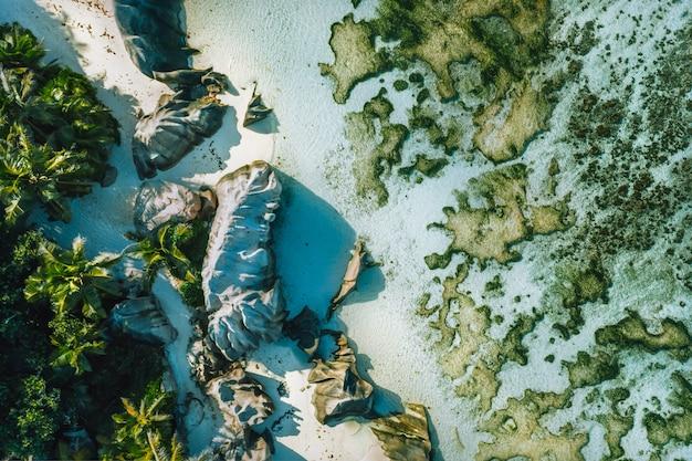 Вид сверху вниз на тропический пляж anse source d argent