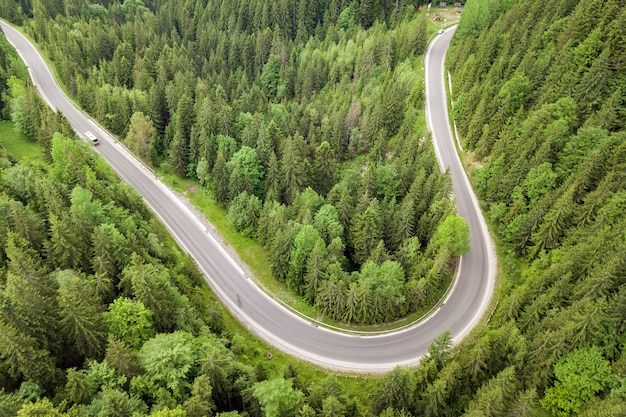 Top down aerial view of winding forest road in green mountain spruce woods.