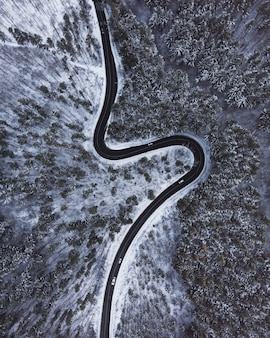 Top down aerial view of a winding road int he middle of trees and snow