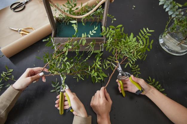 装飾、コピースペースのための花の組成物を作成しながら緑の植物をカットする女性の手でトップダウンビュー