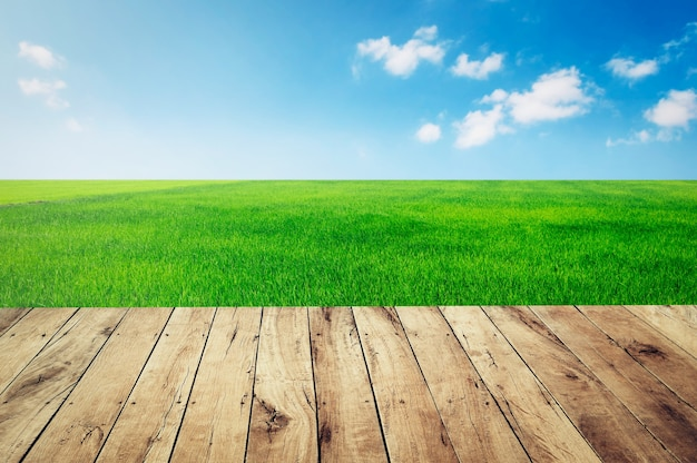 Top empty wood with green grass and blue sky background