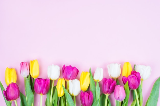 Top high angle above view photo image of beautiful stylish bright different color flowers isolated pastel pink background
