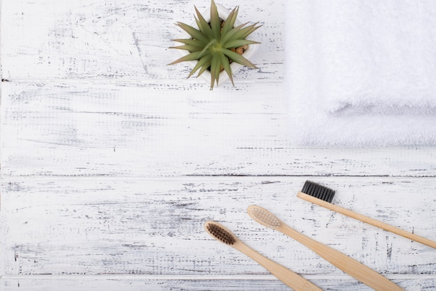 Top above overhead view photo of a bamboo toothbrushes and a succulent isolated on white wooden background