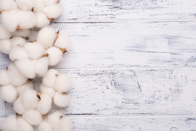 Top above overhead view photo of cotton plant flower isolated on white wooden background