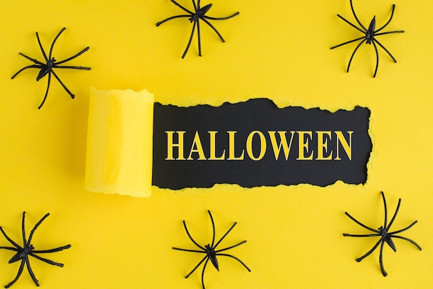 Top above overhead view photo of torn bright yellow paper over black background with decorative spiders