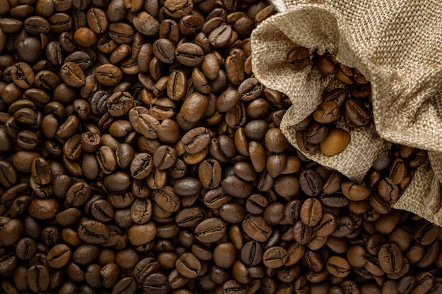 Top photo of coffee beans where the light falls on them laterally to highlight their texture and shadows