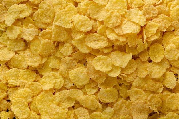 Top photo of cornflake grains where the light falls on them laterally to highlight their texture
