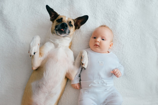 Top portrait of newborn baby lying with funny puppy on bed.