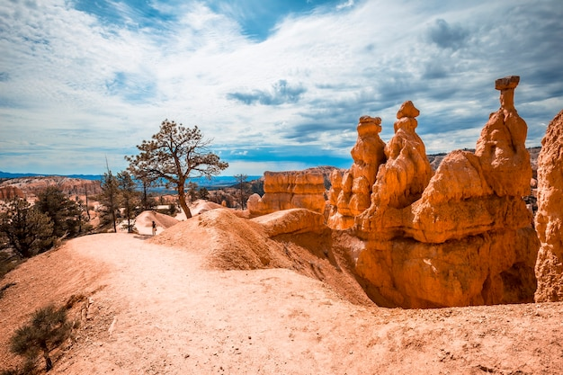 Top of the queens garden trail trekking in bryce national park, utah. united states