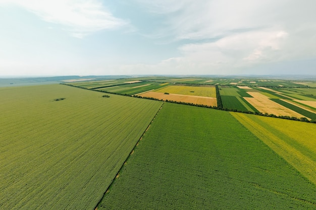 농업 분야의 상위 뷰 공중보기 아름다운 노란색과 녹색 필드 농장 토지 풍경 pa ...
