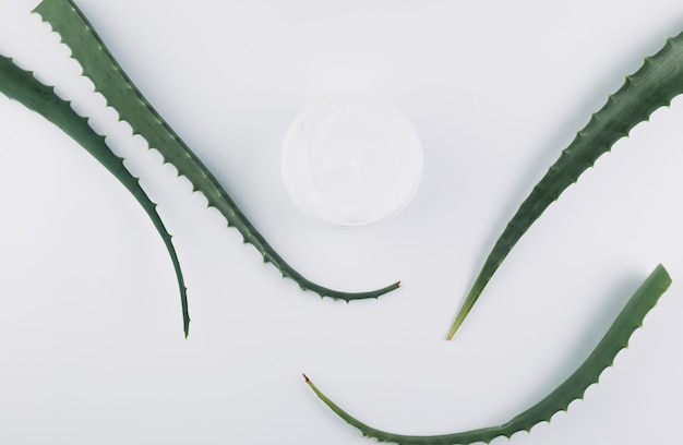Top view aloe vera with beauty tools and cosmetics