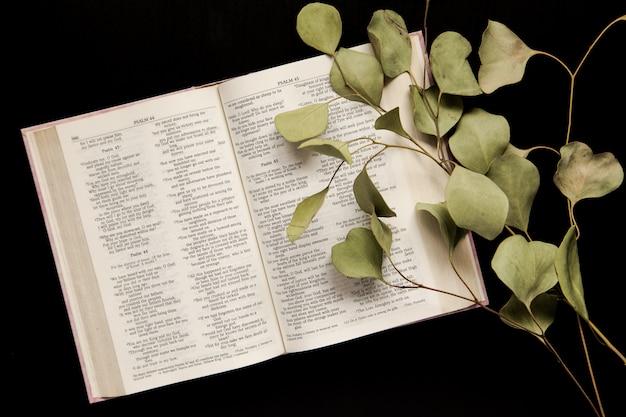 Вид сверху открытая библия с веточкой листьев на темном фоне