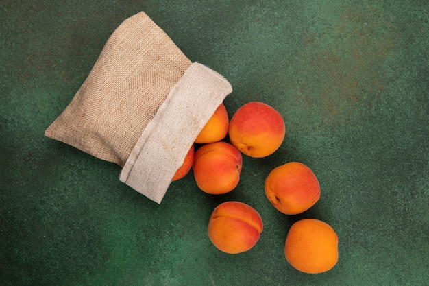 Top view of apricots spilling out of sack on green background