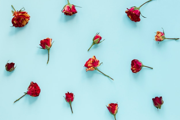 Top view arrangement of flowers on blue background