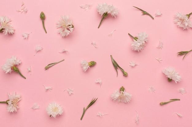 花の上面図の配置