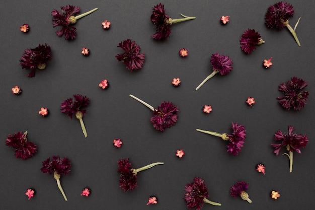 꽃의 평면도 배열