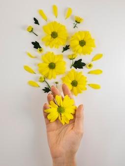 Композиция из концепции оптимизма с цветами сверху Premium Фотографии