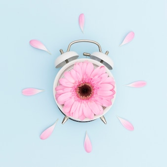 Композиция сверху с розовой маргариткой и часами