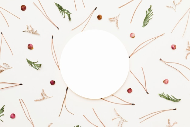 Top view of assortment of autumn plants with paper circle
