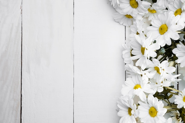 Top view assortment of daisies on wooden background