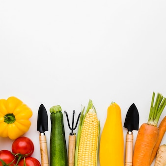Top view assortment of different vegetables and gardening tools