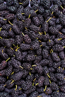 Top view of assortment of mulberries