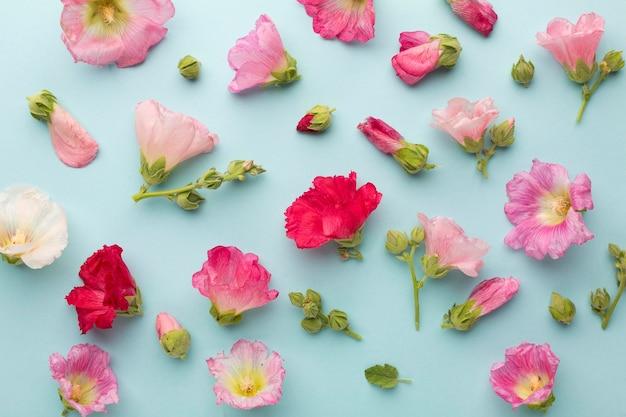 花のトップビューの品揃え