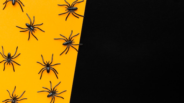 Вид сверху ассортимент пауков с копией пространства