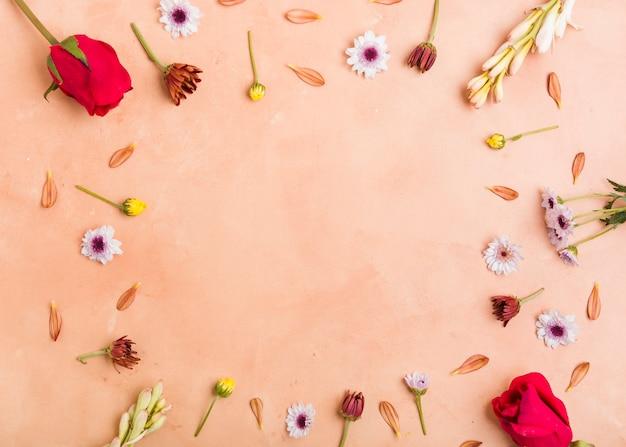 Вид сверху на ассортимент весенних цветов