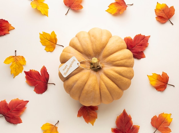 Top view assortment with big pumpkin and leaves