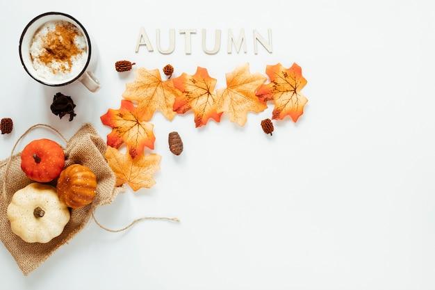 Top view autumn arrangement on white background
